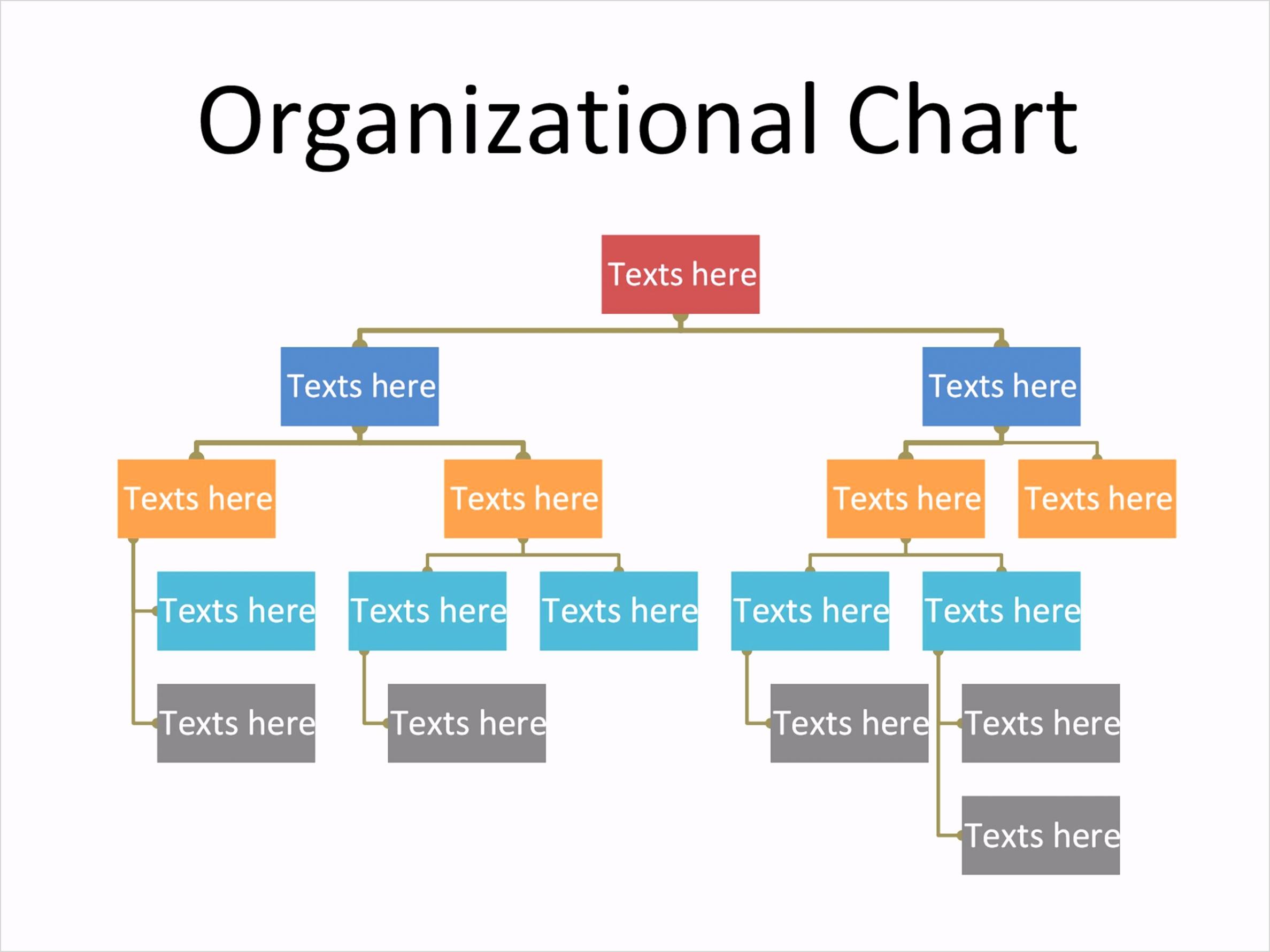 Organizational Chart 19