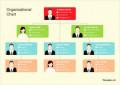 Organization Chart Template Free