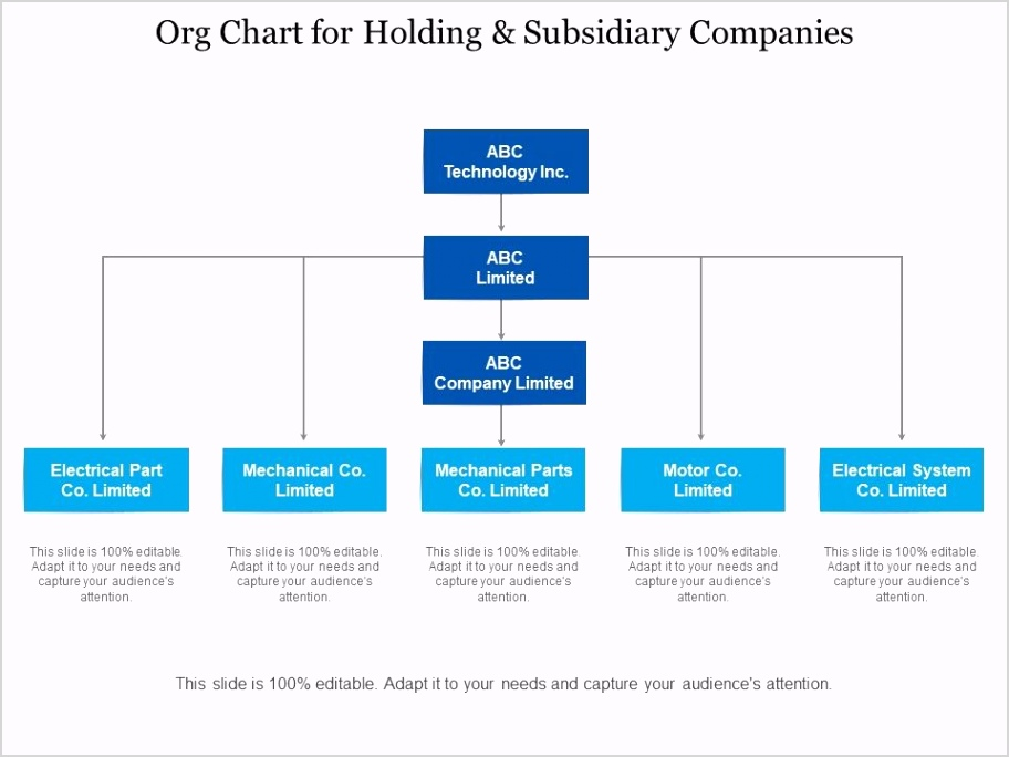 org chart for holding and subsidiary panies Slide01