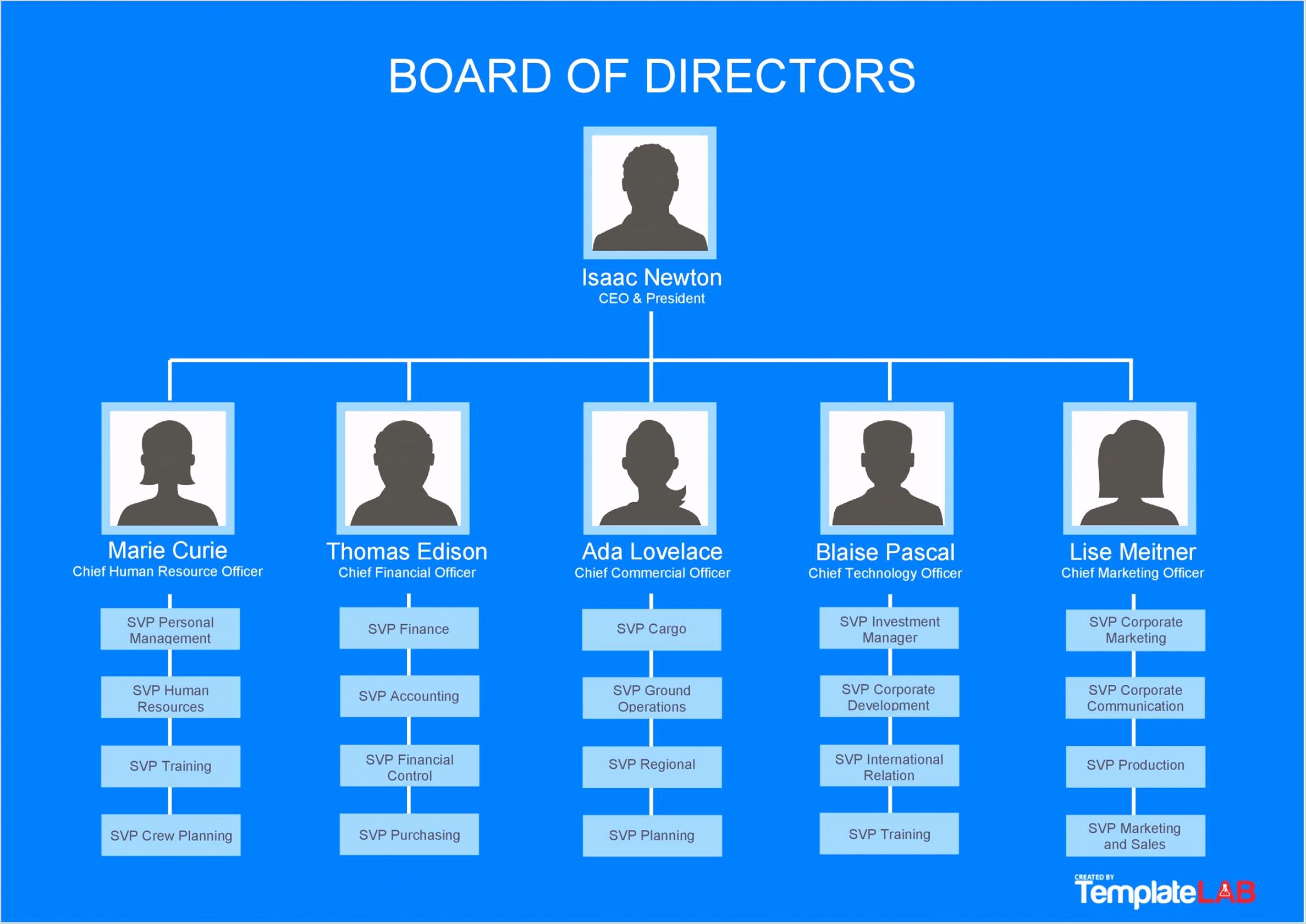 Free Organizational Chart 1 TemplateLab e