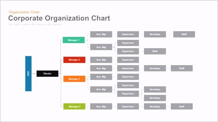 Corporate Organization Chart
