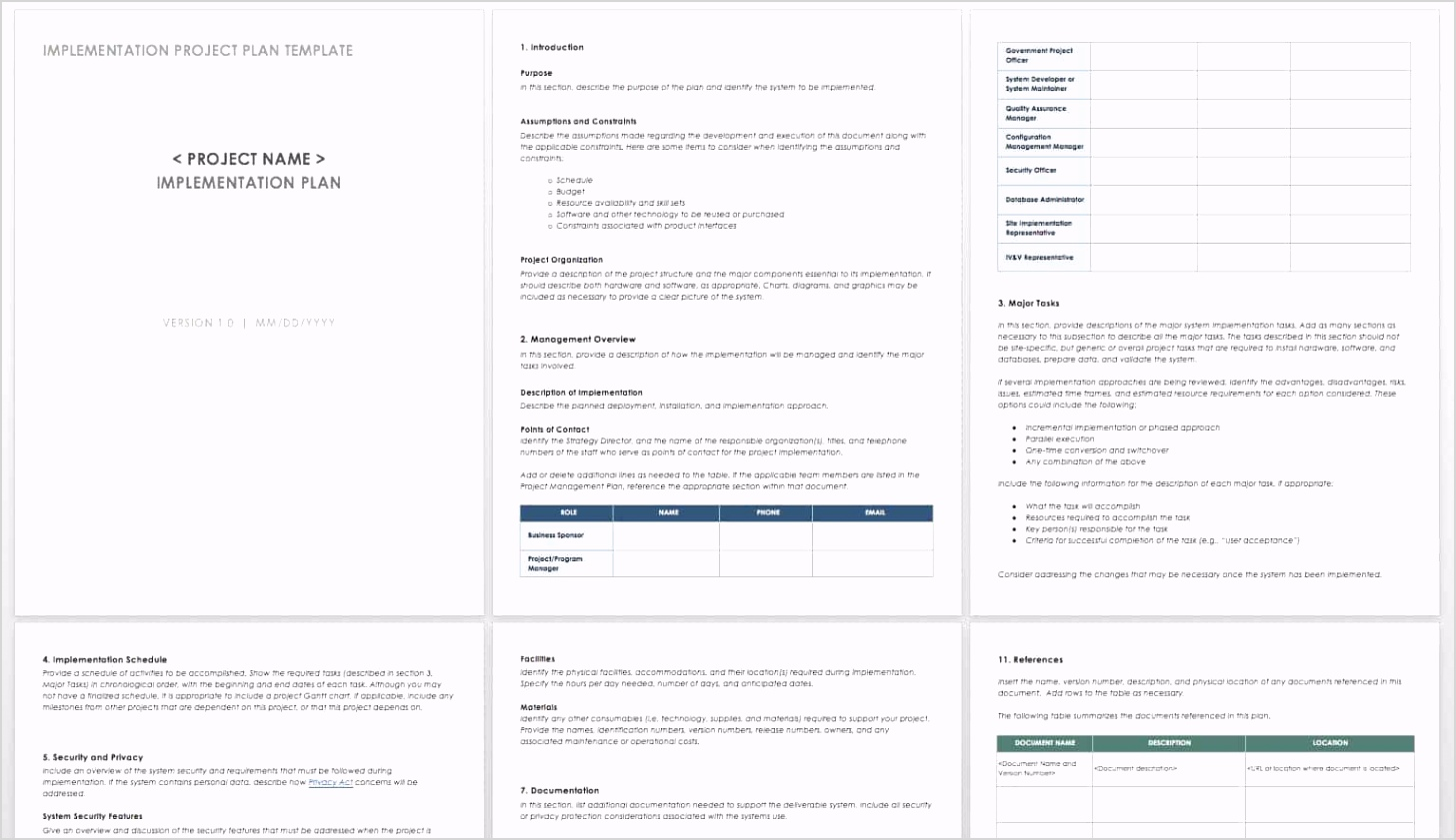IC Implementation Project Plan Template WORD