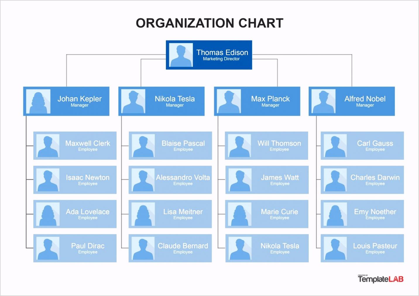 Organization Chart Template 8 TemplateLab e