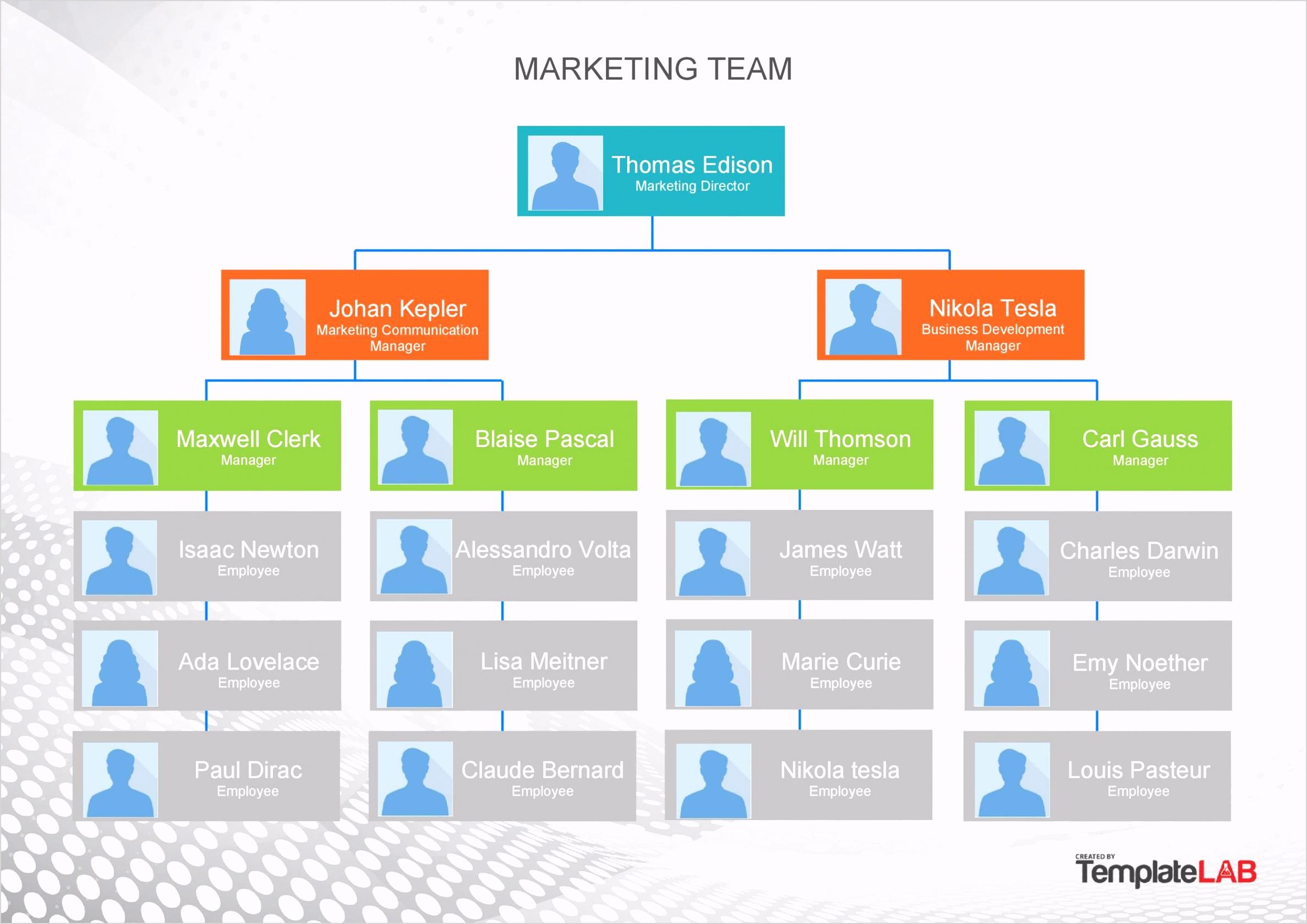 Free Organizational Chart 2 TemplateLab e