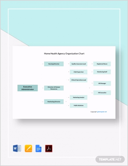Home Health Agency Organization Chart 2