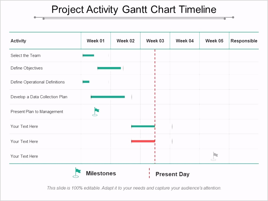 project activity gantt chart timeline Slide01