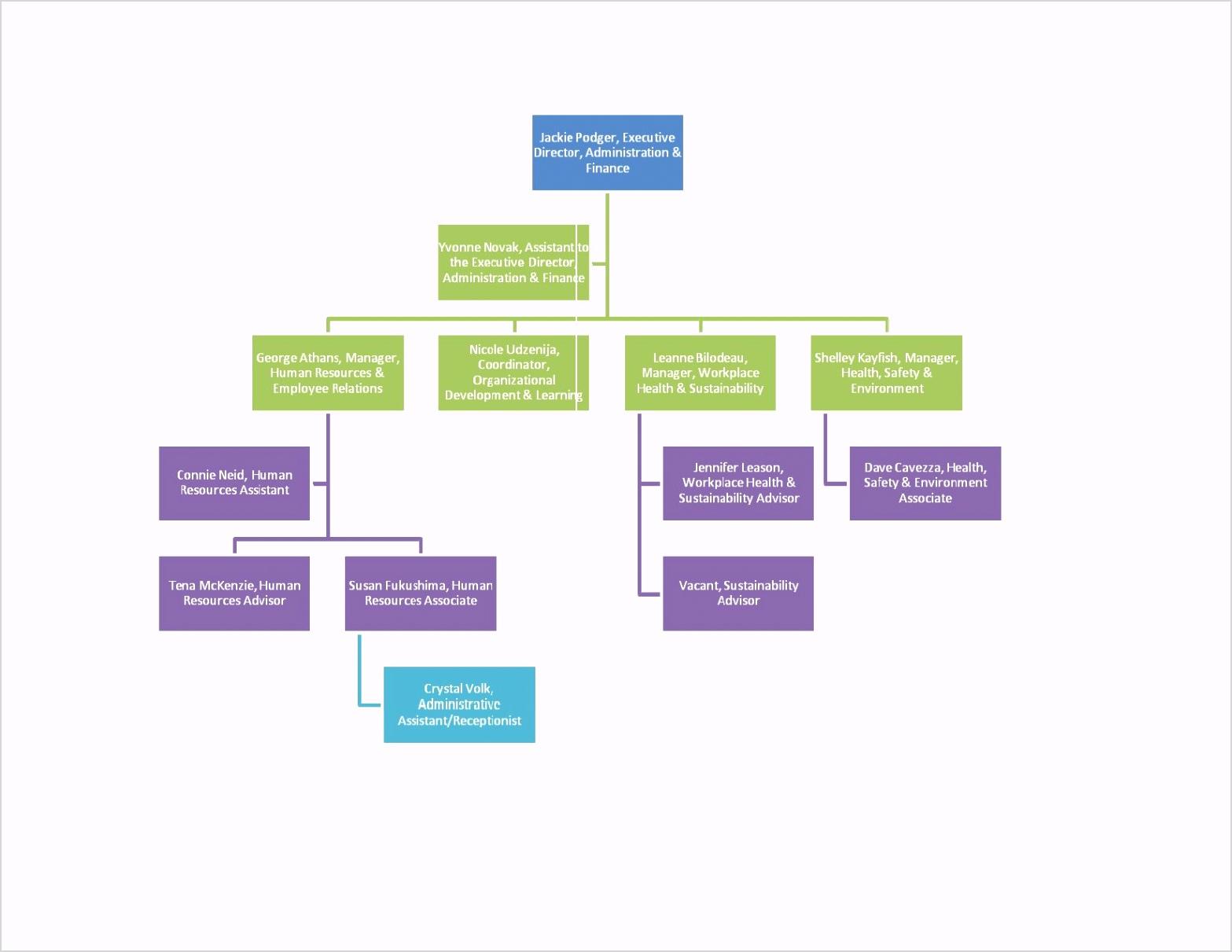 59 Organizational Chart Template Word 2013 pertaining