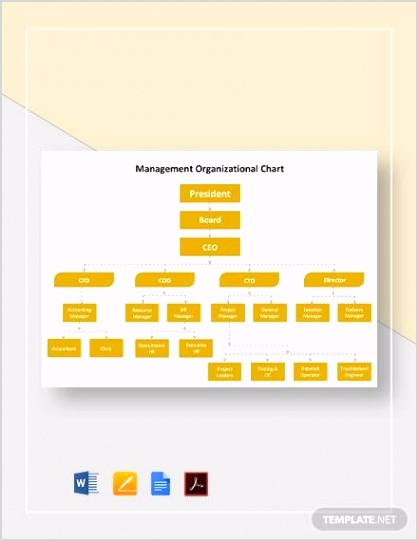 Management Organizational Chart Template