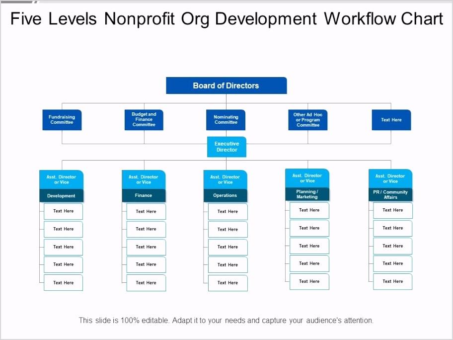 five levels nonprofit org development workflow chart Slide01