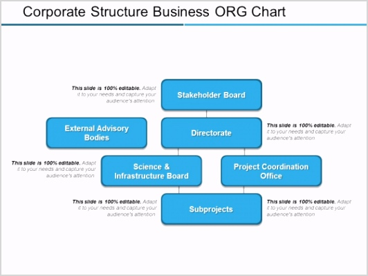 Corporate Structure Business ORG Chart Ppt PowerPoint Presentation Slides Template Slide 1