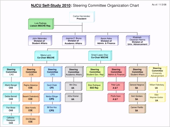 njcu self study 2010 steering mittee organization chart